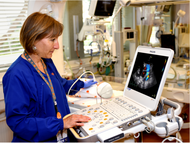 Point of Care Ultrasound in the NICU